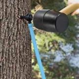 Maple Syrup Tree Tapping and Sugaring Starter Kit