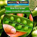 How Peas Grow/Como Crecen Los Guisantes (How Plants Grow/Como Crecen Las Plantas) (Spanish Edition)