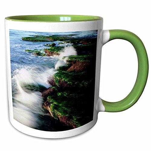 3dRose Danita Delimont - Oceans - USA, California, San Diego. Waves breaking on tide pools. - 11oz Two-Tone Green Mug (mug_208797_7) (Table 7 Cover Pool Wave)