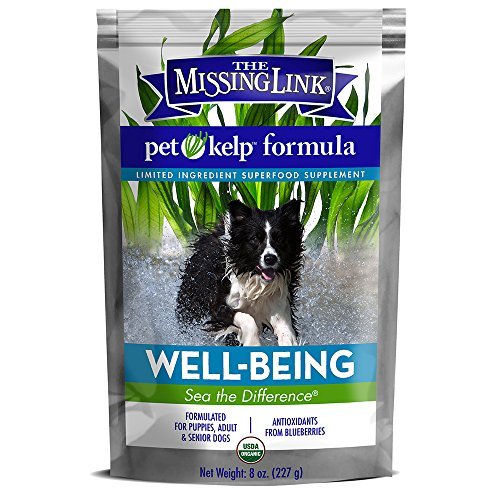 The Missing Link - Organic Pet Kelp, Well-Being Formula - Limited ingredient Superfood Supplement for Dogs rich in balanced Omegas 3, 6, and 9 and antioxidants to support overall health and immunity -  8 ounces