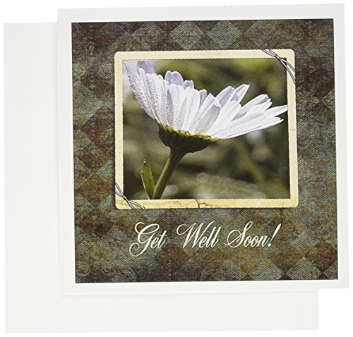 3dRose Greeting Cards, Get Well Soon, 6 x 6 Inches, Ox Eyed Flower with Dew Drops (gc_179265_2) (Dew Flowers)