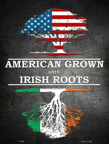Smart Blonde American Grown Irish Roots Metal Novelty Parking Sign P-1300