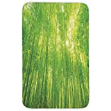 Rectangular Area Rug Mat Rug,Bamboo,Image of Bamboo Trees with Sunlight in Rainforest Exotic Wildlife Plants Nature Zen Decor Decorative,Green,Home Decor Mat with Non Slip Backing