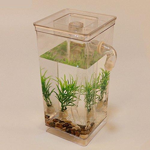 Amazon.com : Ragdoll50 Desktop Aquarium Mini Self-cleaning Grass Fish Tank Magic Fish Tank Automatic Decontamination Tank(Clear) : Pet Supplies