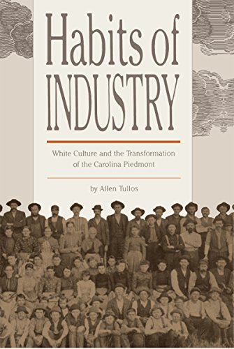 Habits of Industry: White Culture and the Transformation of the Carolina Piedmont (The Fred W. Morrison Series in Southe