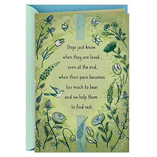 Hallmark Sympathy Loss of Dog Card (Dogs Just Know)