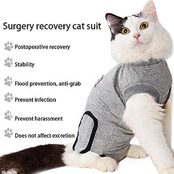 Amazon.com: ZFFLYH Traje de recuperación suítico para gato ...