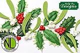 Holly & Mistletoe Silicone Mold