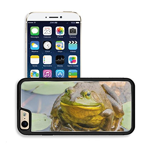 Luxlady Premium Apple Iphone 6 Iphone 6S Aluminum Backplate Bumper Snap Case Image Id  34399814 Bullfrog Sitting On A Log In A Swamp
