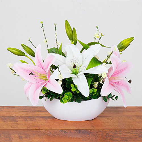[Yiliyajia Artificial Flower PU Lily Real Touch Craft Flower Bonsai for Office Decoration and Home decor (White vase)] (Water Blossom Ivy Type)