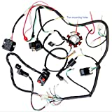 amazon com wiring wire harness loom 32100 323 040 1972 1973 200cc 250cc atv quad full electrics cdi coil rectifier wiring harness wire loom