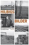 Hilbigs Bilder: Essays und Aufsätze