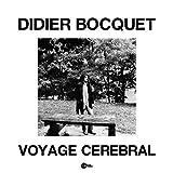 Didier Bocquet - Voyage Cerebral - Wah Wah Records - LPS193