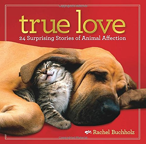 True Love: 24 Surprising Stories of Animal (History Of Halloween National Geographic)