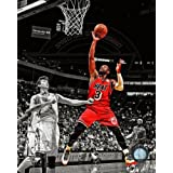 Dwyane Wade Miami Heat 2013 NBA Spotlight Action Photo 8x10