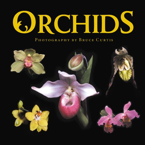 Download Orchids pdf epub