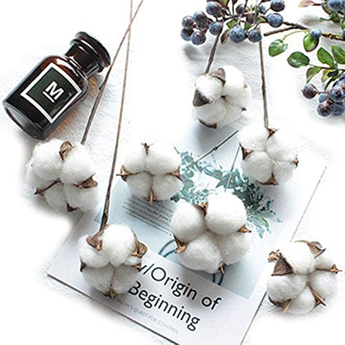 Artfen 10 Pack Artificial Cotton Boll Wire Iron Stem DIY Flower Arrangement Props Home Wedding Hotel Party Decor Approx 13 High