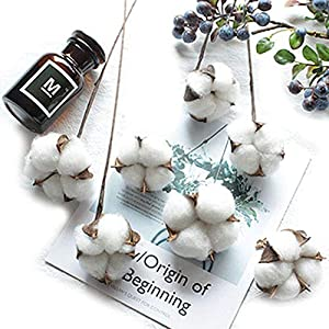 "Artfen 10 Pack Artificial Cotton Boll Wire Iron Stem DIY Flower Arrangement Props Home Wedding Hotel Party Decor Approx 13"" High 23"
