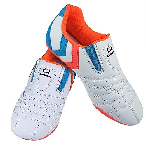 GINGPAI Taekwondo Shoes Martial Arts Sneaker Boxing Karate Kung Fu Tai Chi Shoes Sneakers Lightweight Sports Shoes,Tae…