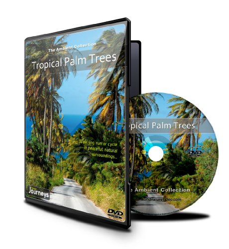 Excursiones de Fitness: Los Árboles de Palma Tropicales: Amazon.es: The Ambient Collection, Tony Helsloot: Cine y Series TV