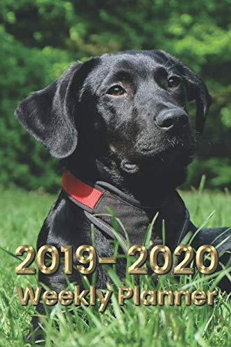 Labrador Retriever 6x9 2019-2020 Weekly Planner #4: A 2 year dog themed planner with weekly themed pages, plenty of space to write, and a journal in the back.]()