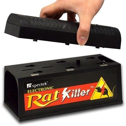 elettrica per topi