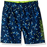 Under Armour Boys' Volley Swim Trunk