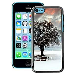 Snap-on Series Teléfono Carcasa Funda Case Caso para iPhone 5C , ( Winter Tree )