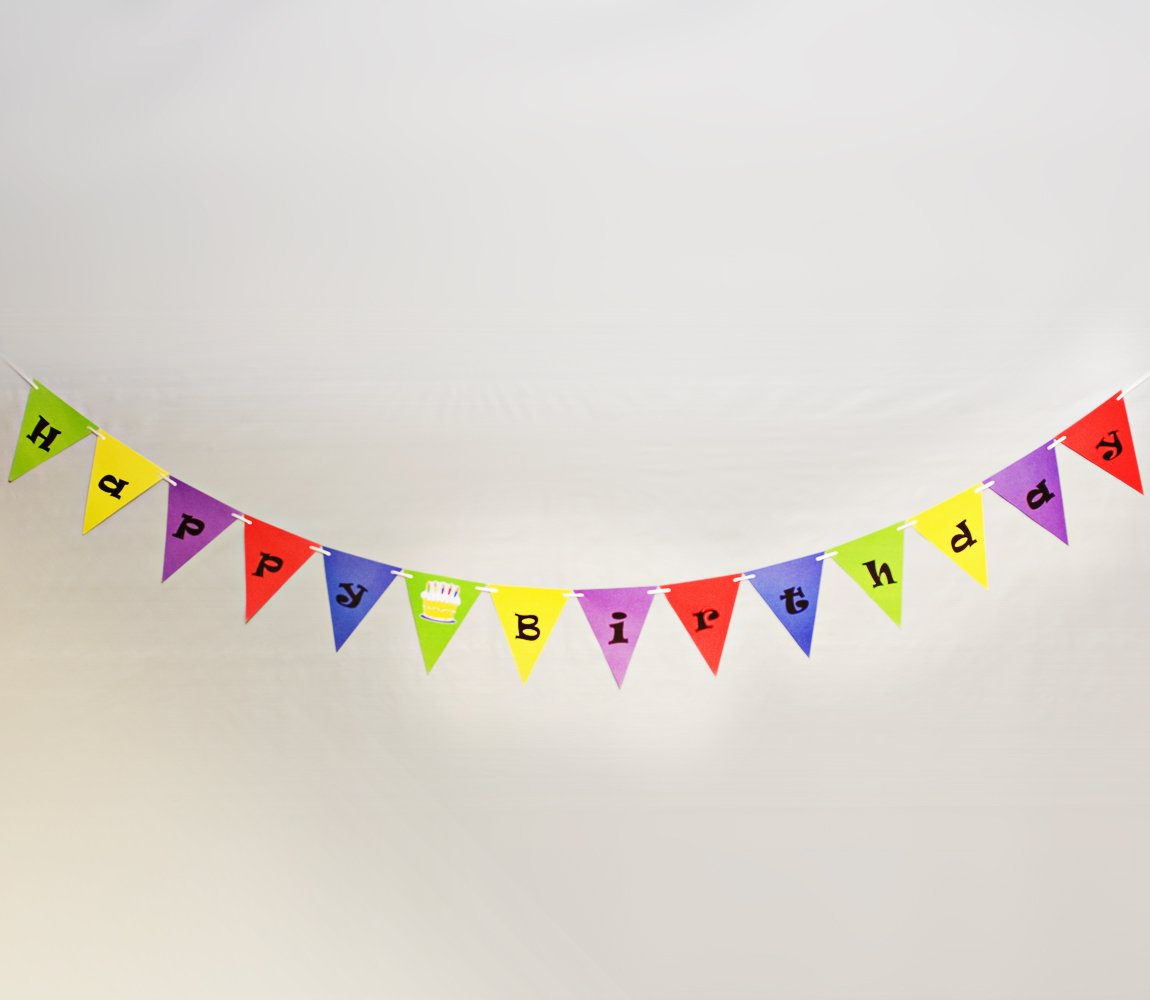 Ninja Themed Fiesta Flags Pennant Banner 10 Feet Long 9 Mini Flags Made of Polyester Cloth Birthday Party Decorations Bunting For Boys Girls Desert Cactus