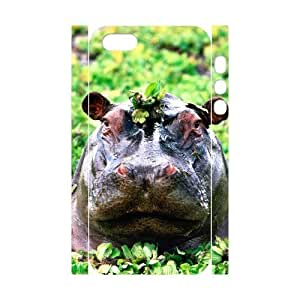 ALICASE Diy Customized Case Hippo 3D Case for iPhone 5,5S [Pattern-1]