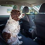 Ezisoul Car Dog Barrier Large – Backseat Mesh Net Vehicle Organizer – Universal Fit – Comes with Bonus Dog Lead Review