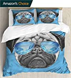 """carmaxs-home Kids Quilt 3 Piece Bedding Set,Box Stitched,Soft,Breathable,Hypoallergenic,Fade Resistant with Sham and Decorative 2 Pillows,Full Queen-Pug Portrait with Sunglasses (104"""" W x 90"""" L)"""