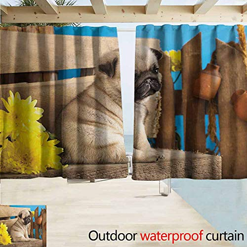 DocGike Pug Curtains for Bedroom Adorable Puppy Photography with Sad Dog and Wildflowers on a Park Bench Great for Living Rooms & Bedrooms W72 xL63 Pale Brown Yellow Blue