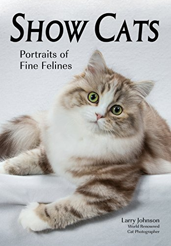 Show Cats: Portraits of Fine Felines by Amherst Media (Image #1)