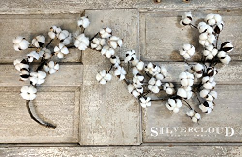 Silvercloud Trading Co. Real Cotton Boll Garland - 5ft Garland - Adjustable Stems - Farmhouse Decor - Wedding Centerpiece]()