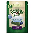 GREENIES Bursting Blueberry Dental Chews Large Treats for Dogs - 12 oz