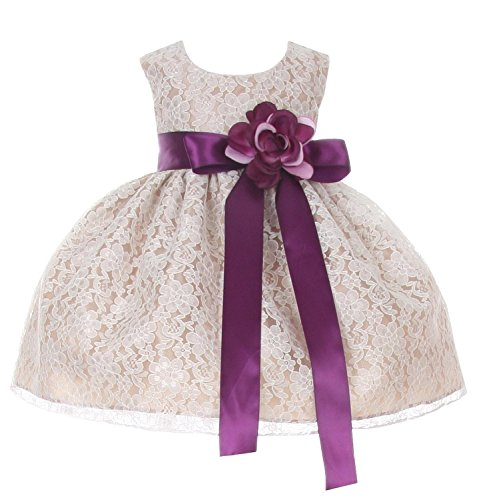 Cinderella Couture Baby-Girls Champagne Lace Dress Purple Sash & Flw 12M M 1132B