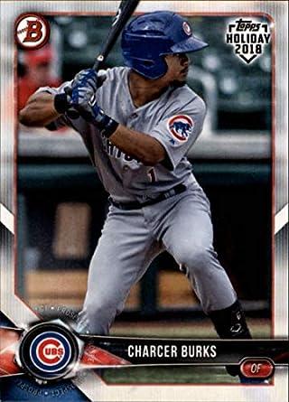 Charcer Burks Chicago Cubs Rookie Autographed New Minor League Ball # 4 Balls Sports Mem, Cards & Fan Shop