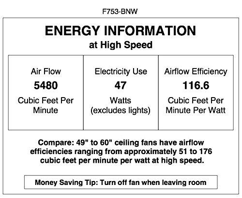 "Minka-Aire F753-BNW, Java Brushed Nickel Wet 54"" Outdoor Cei"