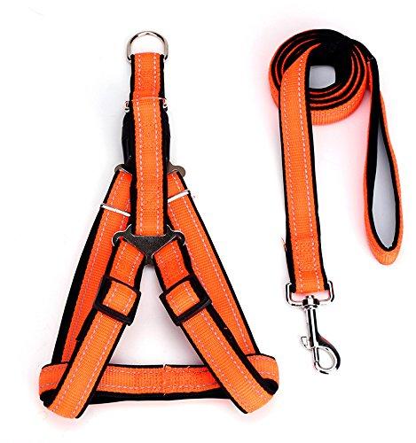 orange S orange S Dog Chest Back, Dog Leash Dog Leash pet Chest Strap Dog Leash Chest Strap pet Vest Chest Back pet Leash pet Supplies (color   orange, Size   S)