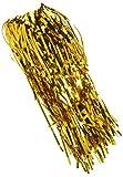 Forum Novelties 76011 SUNBEAUTY Metallic Tinsel Foil Fringe Curtains (Tools & Home Improvement)