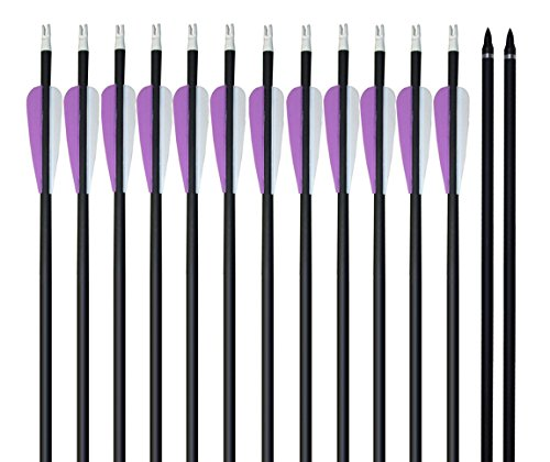 Zpy Colored Fletched Carbon Arrows Archery Hunting Arrows with Replaceable Tips for Recurve bow and Long bow 12 Pack