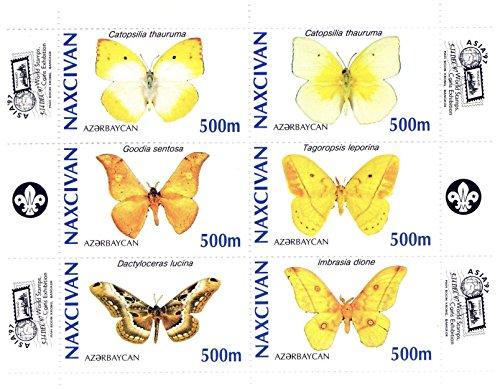 Souvenir Sheet of Butterflies - 6 perforated stamps for collectors / Naxcivan Azerbaijan / 1997 / MNH perfect (Butterflies Souvenir Sheet)