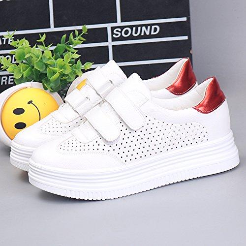 Harajuku El Zapatos White La Respiró El Mujer Primavera Fondo Zapatos Grueso Mujer De Vaciado GTVERNH Calzado Los Y red De Verano wa1HqZBHn