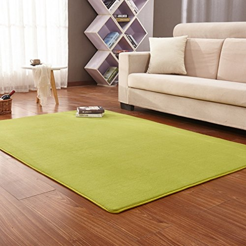 GIY Soft Indoor Area Rugs Shag Fluffy Living Room Rectangular Carpets Children Bedroom Home Decor Nursery Rugs 7' x 10' (Turtle Plush 10')