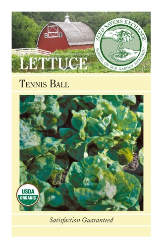 Seed Savers Exchange 0391 Organic, Open-pollinated Lettuce Seed, Tennis Ball, 250 Seed Packet