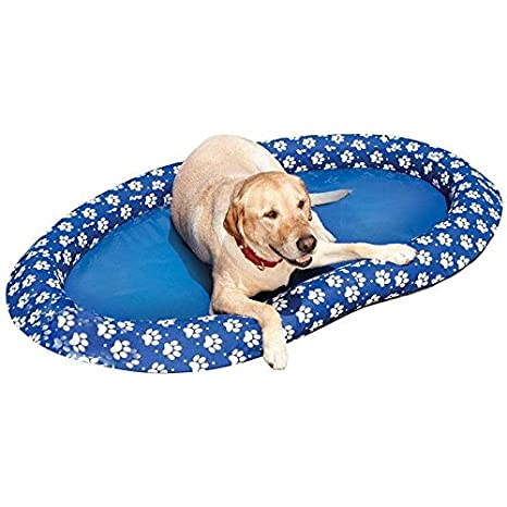 Ginkago Flotador Hinchable Dinghy - Colchón de Aire para Perro y Animal: Amazon.es: Productos para mascotas