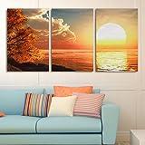 3 Cascade Day Sunset Scene Can