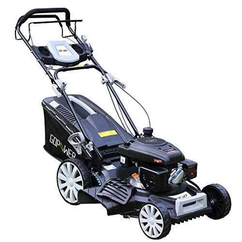 "Long World 161cc 20"" Deck 3-in-1 Self-Propelled Gas Lawn Mower Gasoline Push Mower and Recoil Starter, OHV Engine, 10-inch High Rear Wheels Drive, Side Discharge Mulching Rear Bag, Black (20inch)"