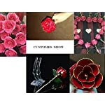 NEW-Long-Stem-Dipped-24k-Gold-Foil-Trim-Rose-Best-Gift-for-Valentines-Day-Mothers-Day-Anniversary-Birthday-Gift-for-Her